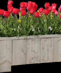 1-jarig BloemenStorm Bloembakken abonnement Abonneren
