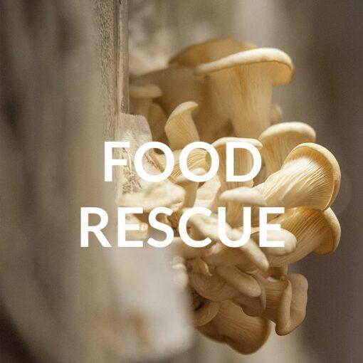 Cadeaupakket 'Food Rescue' Geven