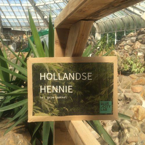 Hollandse HENNIE – het groeipakket Zelf laten groeien