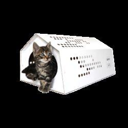 Kartonnen CatTent – de Tent voor Katten Geven